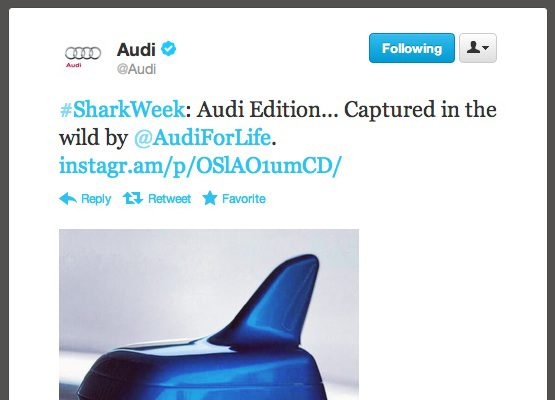 So… my Twitter feed a-sploded again, this time for #SharkWeek