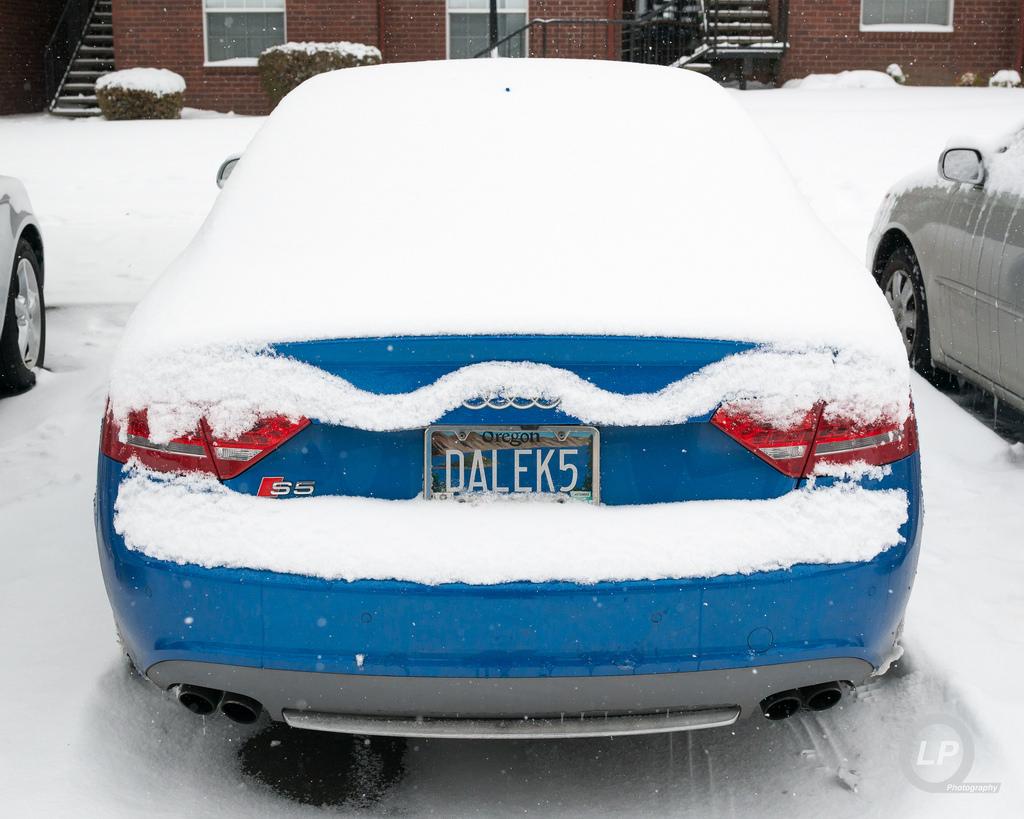 You decide: snow unibrow or snow-stache?